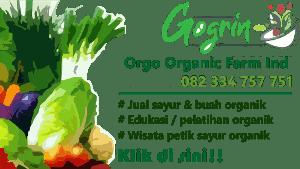 Jual Sayur Organik